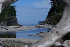 Rubin plaża, Olimpijski park narodowy Fotografia Stock
