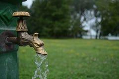 Rubinetto di acqua d'ottone del drago Fotografie Stock Libere da Diritti