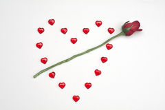 Rubinowi serca na białym tle z wzrastali Obraz Royalty Free