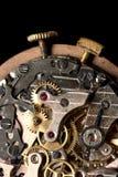 Rubis Imagem de Stock