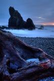 rubis de plage image libre de droits