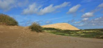 Rubjerg Knude, alta duna di sabbia alla costa ovest della Danimarca Immagini Stock