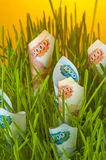 Ruble bills in green grass Royalty Free Stock Images