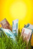 Rubli banknoty w zielonej trawie Obrazy Royalty Free