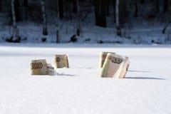 Rublos congelados na neve Fotos de Stock Royalty Free