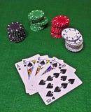 Rubor real con las virutas del casino Imágenes de archivo libres de regalías