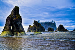 Ruby Beach Royalty Free Stock Photography