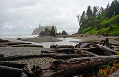 Ruby Beach Image libre de droits