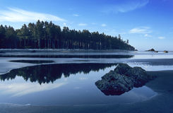 Ruby Beach. In Olympic National Park at low tide on a summer morning Royalty Free Stock Images