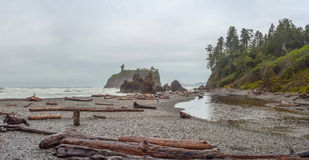 Ruby Beach Royaltyfria Bilder