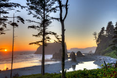Ruby Beach Foto de Stock Royalty Free