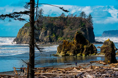 Ruby Beach Stock Afbeelding