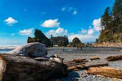 Ruby Beach Royalty-vrije Stock Foto