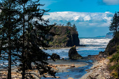 Ruby Beach Royalty-vrije Stock Fotografie