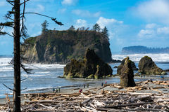Ruby Beach Stock Foto's