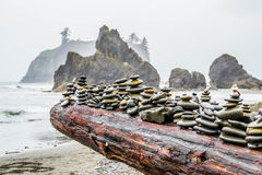 Ruby Beach Arkivfoton
