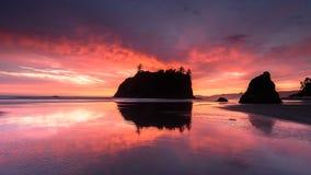 Ruby Beach royaltyfri fotografi