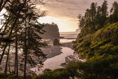 Ruby Beach Landscape Stockfotos