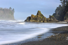 Ruby Beach in Olympisch Nationaal Park stock afbeelding