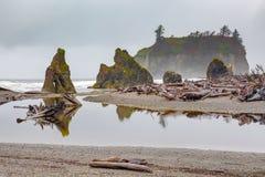 Ruby Beach, Olympisch Nationaal Park in U S Staat van Washington royalty-vrije stock afbeelding