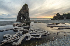 Ruby Beach Reflecting Pool Stock Photography