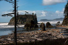 Ruby Beach Stock Image