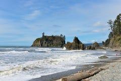 Ruby Beach, Washington State, penisola olimpica Fotografie Stock