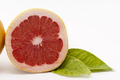 Ruby Grapefruit Royaltyfri Bild