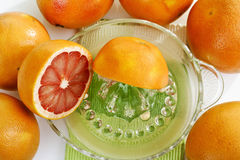 Ruby grapefruits on juice squeezer Royalty Free Stock Photography
