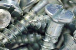 Śruby Makro- Obrazy Stock