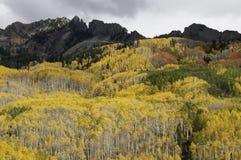 Ruby Mountain über Espenbäumen durch Kebler-Durchlauf Lizenzfreie Stockfotos