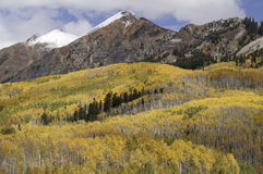 Ruby Mountain Range door Kebler Pass Colorado Stock Fotografie