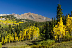 Ruby Peak on Kebler Pass. Morning glow on Ruby Peak during fall Royalty Free Stock Image