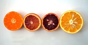 Ruby red blood oranges, navel oranges, and clementines cut in half Stock Images