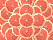 Ruby red grapefruit Royalty Free Stock Photo