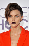 Ruby Rose Stock Images