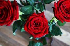 Ruby Roses Bunch rosso sul fondo di Blured delle foglie immagini stock libere da diritti