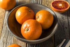 Ruby Tango Blood Orange Clementines orgânico cru imagens de stock royalty free
