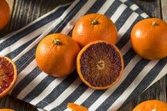 Ruby Tango Blood Orange Clementines orgânico cru fotografia de stock