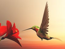 Ruby-throated hummingbird - 3D render Stock Image