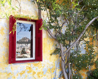 Ruby wooden window and plant Royalty Free Stock Photos