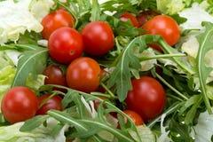 Ruccola, φύλλα μαρουλιού και ντομάτες κερασιών Στοκ Εικόνες