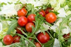 Ruccola, φύλλα μαρουλιού και ντομάτες κερασιών Στοκ φωτογραφία με δικαίωμα ελεύθερης χρήσης