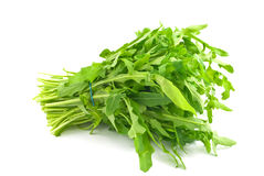 Ruccola Stock Photos
