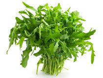 Ruccola Stock Photography