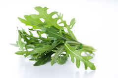 Ruccola Royalty Free Stock Photos