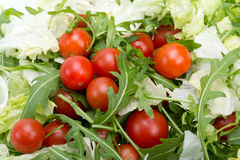 Ruccola, lettuce leaves and cherry tomatoes Royalty Free Stock Photo