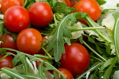 Ruccola, lettuce leaves and cherry tomatoes Stock Photography