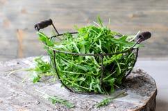 Ruccola pour la salade verte fraîche Image libre de droits