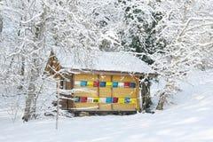 Ruche colorée en hiver photo stock